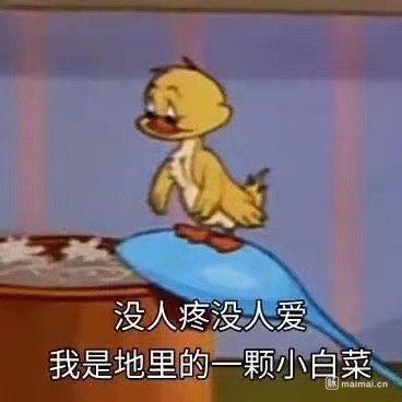 坐标北京,帝都人人年薪50+,遍地是海龟,像我这种普通菜…